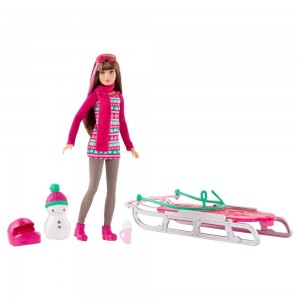 Barbie Sisters' Sledding Fun and Doll Playset - SALE